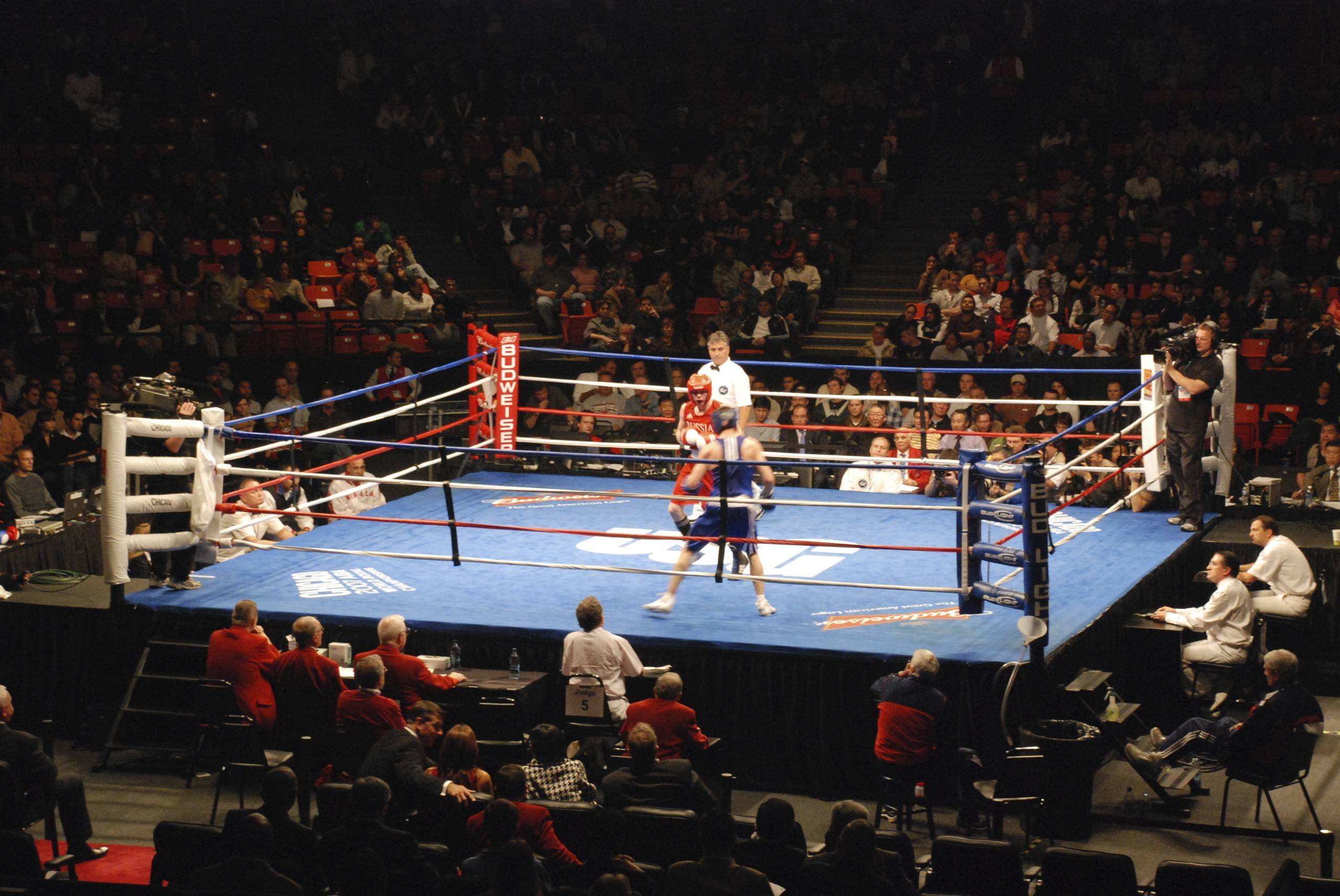 clear boxing ring Royalty Free