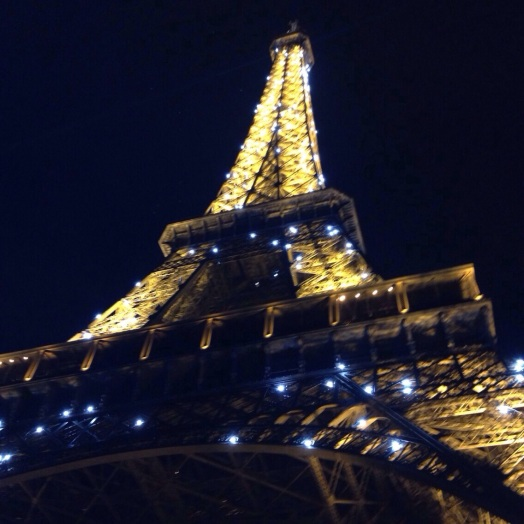 Paris, 12/30/2014, Izzi Stevenson